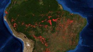 Read more about the article Amazonas-Regenwald brennt seit Wochen
